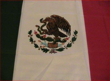 banderita-obsequiada2.JPG
